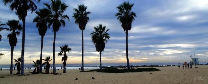 Plage de Venise à Los Angeles - Cliquer pour agrandir