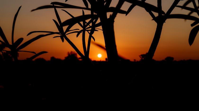 jour17-lever-soleil