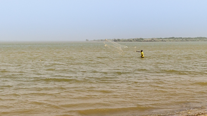 Un pêcheur lançant son filet dans le fleuve Sénégal pendant que j'attends un taxi pour aller luncher à la maison.
