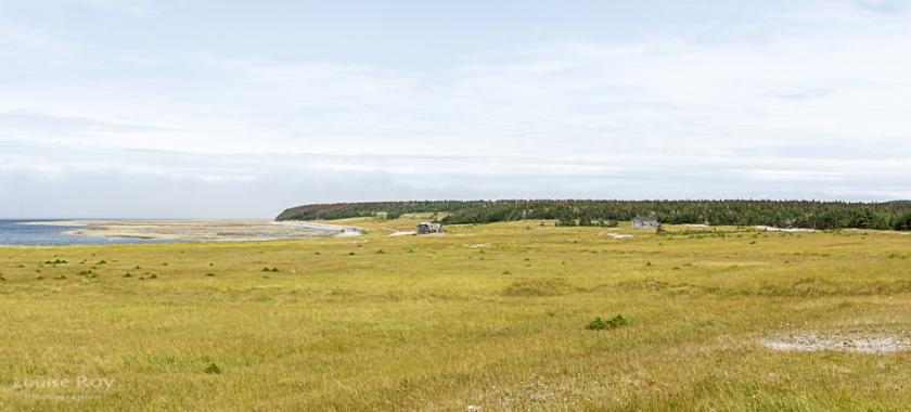 Baie Sainte-Claire aujourd'hui